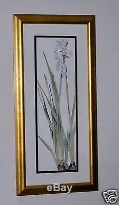 BLUE SPRING STARFLOWERS PROFESSIONALLY DOUBLE MATTED GLASS FRAMED PRINT AWESOME