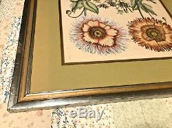 Original Antique Framed Double Matted Hand Colored Etching under Glass