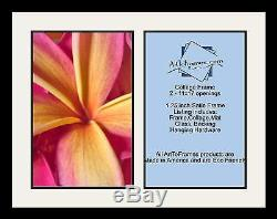 Satin Black Collage Picture Frame with 2 11x17 opening(s), Double Matted