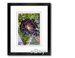 Set of 6 12x16 Black Wood Frames, Clear Glass, White Double Mats for 9x12
