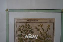 the kitchen garden 19th century print 497 double glass frame antique - Double Glass Picture Frame