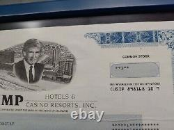 Trump Hotels & Casino Resorts, Inc. 2002 Stock Certificate Framed double glass