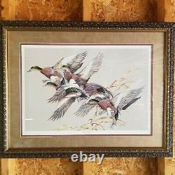 Wigeon Impact Double Signature by ART LAMAY Glass Framed Print TOP COLLECTOR